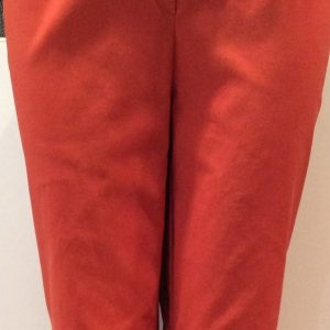 Ina Trouser in Burnt Orange from Artichoke